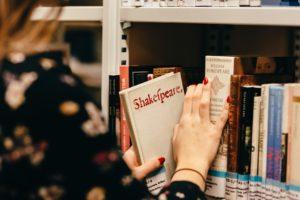 Usluge prijevoda književnog djela